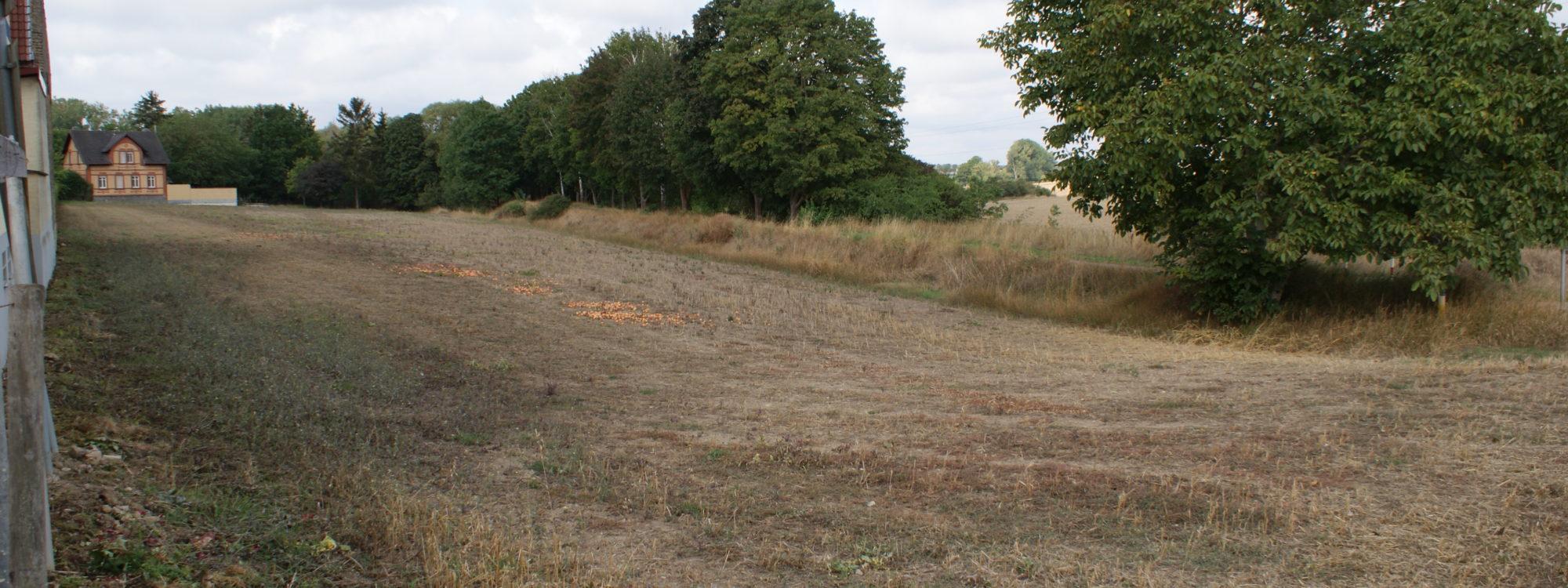 Gut gelegenes Grundstück, teilweise Bauland